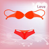 Bra and underwear trunks. illustration Royalty Free Stock Photography