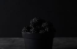 braambes Braambessen in zwarte decoratieve vaas op een donkere abstracte achtergrond Stock Fotografie