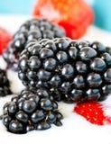 Braambessen en aardbeien in yoghurt Royalty-vrije Stock Fotografie