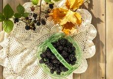 Braambessen en eiken bladeren op kantdoily stock foto's