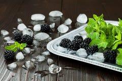 Braambessen en munt met ijs op zilveren dienblad over donkere rustieke houten lijst De zomerachtergrond Stock Afbeelding