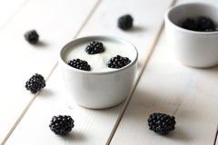 Braambessen in witte yoghurt royalty-vrije stock foto