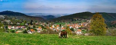 Brabancon belgian horse on the farmland, Alsace, France. Brabancon belgian horse on the farmland pasturage, Alsace, France Stock Photo