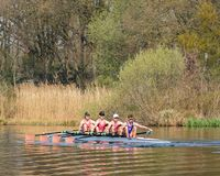 Male rowing team in a canal on sunny spring day, Brabant, Netherlands. BRABANT-APRIL 7, 2019. Male rowing team in a canal. Rowing is one of the few non-weight stock photography