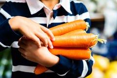 Bracée de transport de jeune de nourriture organique fraîche de légumes de plan rapproché du marché d'agriculteurs de carottes images stock