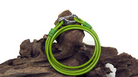 Braccialetto verde fotografia stock libera da diritti