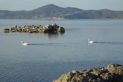 Bracciano ` s jezioro, widok od Anguillara Sabazia Fotografia Stock