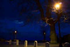 Bracciano sentinella zdjęcie royalty free