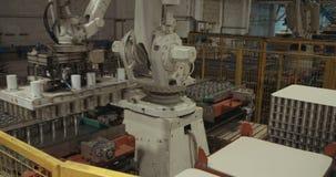 Braccio robot che dispone alimento inscatolato per l'imballaggio in un magazzino video d archivio