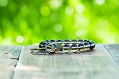 Bracelet jewelery Stock Photos