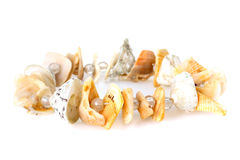 Bracelet made of shells Stock Photo