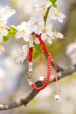 Bracelet rouge accrochant dans une branche de floraison Photographie stock