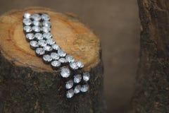 Bracelet sur la souche Photos stock