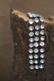 Bracelet sur le rondin Photos stock
