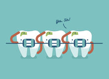 Braces teeth of dental healthcare vector illustration