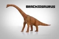 Brachiosaurus Photographie stock