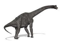 brachiosaurus恐龙 免版税图库摄影