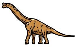 Brachiosaurus Stock Images