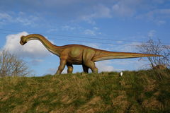 Brachiosaurus - Brachiosaurusaltithorax Fotografering för Bildbyråer
