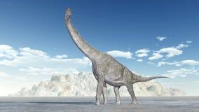Brachiosaurus de dinosaure Photographie stock libre de droits