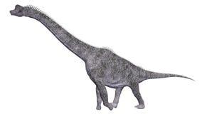 Brachiosaurus de dinosaure Photographie stock
