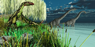 Brachiosaurus and Dilong Dinosaurs Stock Photos