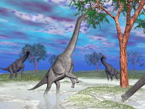 Brachiosaurus dinosaur eating - 3D render Royalty Free Stock Photo