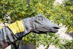Brachiosaurus Dinosaur Head and Neck in the Trees Royalty Free Stock Image