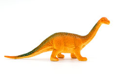 Brachiosaurus dinosaur toy model. On white background Stock Photos