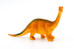 Brachiosaurus dinosaur toy model. On white background Royalty Free Stock Photography