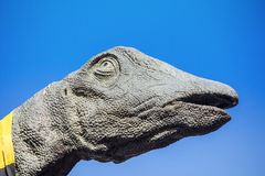 Brachiosaurus-Dinosaurier-Kopf Lizenzfreie Stockbilder