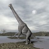 Brachiosaurus dinosaurs - 3D render Royalty Free Stock Images