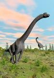 Brachiosaurus dinosaurs - 3D render Royalty Free Stock Photo