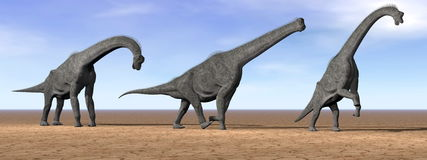 Brachiosaurus dinosaurs in the desert - 3D render Royalty Free Stock Images