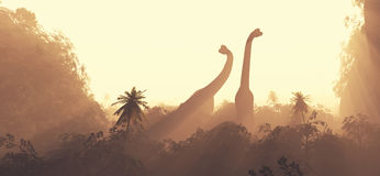 Brachiosaurus dinosaurs royalty free illustration