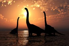 Brachiosaurus en la puesta del sol Imágenes de archivo libres de regalías