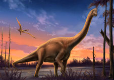 Brachiosaurus and pterosaur. It was a dusk, A brachiosaurus was smiling and a pterosaur was flying Stock Photography