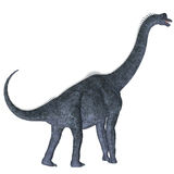 Brachiosaurus sopra bianco Immagini Stock Libere da Diritti