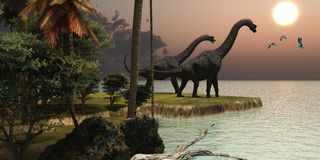 Brachiosaurus Sunset. Two Brachiosaurus dinosaurs enjoy a beautiful sunset Royalty Free Stock Images