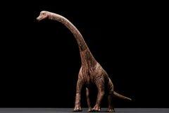 Brachiosaurus zabawka Zdjęcie Stock