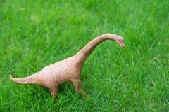 Brachiosaurus zabawka na trawie Obrazy Royalty Free