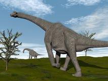 Brachiosaurusdinosaurier går - 3D framför Arkivfoton