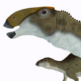 Brachylophosaurus Dinosaur Head Royalty Free Stock Photography