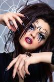 brachypelma dziewczyny smithi pająk Fotografia Stock