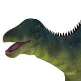 Brachytrachelopan Dinosaur Head Stock Photography