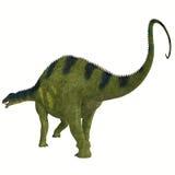 Brachytrachelopan Dinosaur Tail Stock Photo