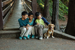 Bracia siedzi wraz z ich psem Zdjęcie Stock