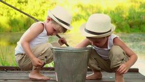 Bracia szepczą po łowić szczęśliwi dzieci po łowić Dzieci oglądają chwyta po łowić Piękny zdjęcie wideo