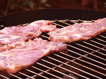 Braciole di maiale sul barbecue Fotografie Stock Libere da Diritti