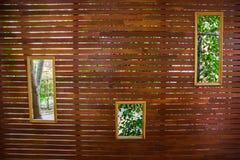 Brackgrounds en bois Images libres de droits